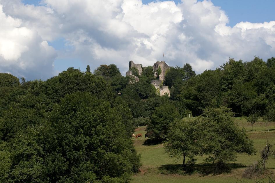 Ansicht der Burg Badenweiler; Foto: Staatliche Schlösser und Gärten Baden-Württemberg, Achim Mende